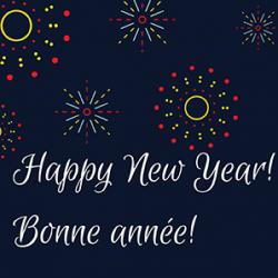 Happy New Year Fireworkssm